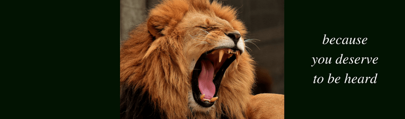 CC Lions 1 (6)