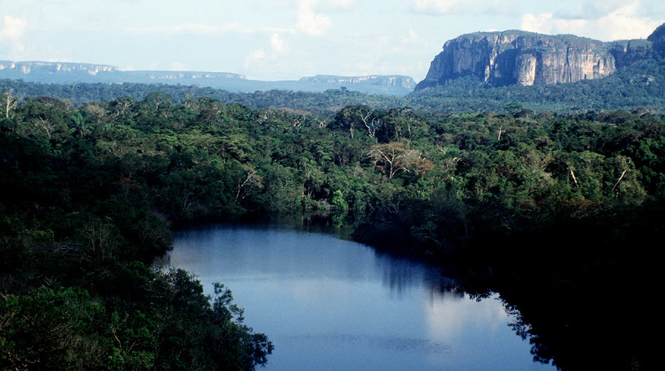 CHIRIBIQUETE_1_Alvaro_Gaviria_-_Parques_Nacionales_Naturales_de_Colombia_9_s07