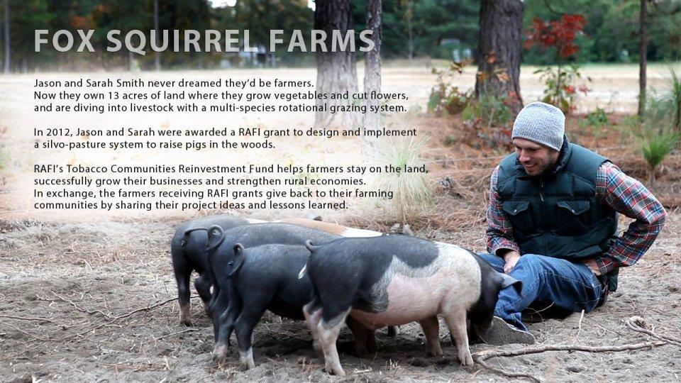 Fox-Squirrel-Farm