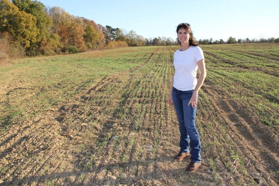 RAFI BOPS Coordinator Kelli Dale at an organic wheat testing plot on Lindale Farms in Chatham County, NC.