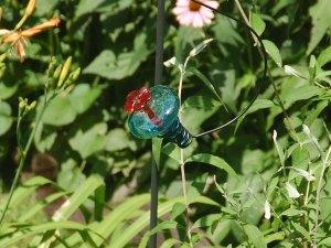 HummingbirdtFeederBig