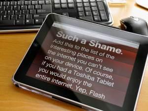 iPad_SuchAShameBig