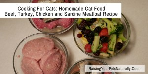 Cooking For Cats: Homemade Cat Food: Beef, Turkey, Chicken and Sardine Meatloaf