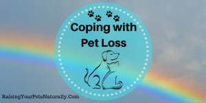 How to Get Over the Loss of a Pet Pt. 1: Understanding Pet Grief
