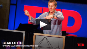 Beau Lotto at Ted