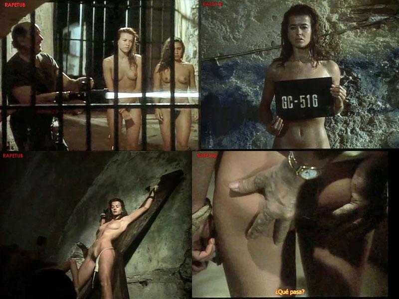 Arab pussy porn