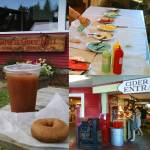 Vermont Cider Festival at Cold Hollow Cider Mill