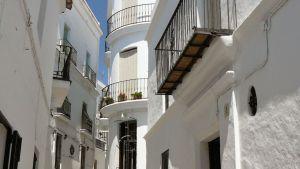casa-shelly-galleryp1030126