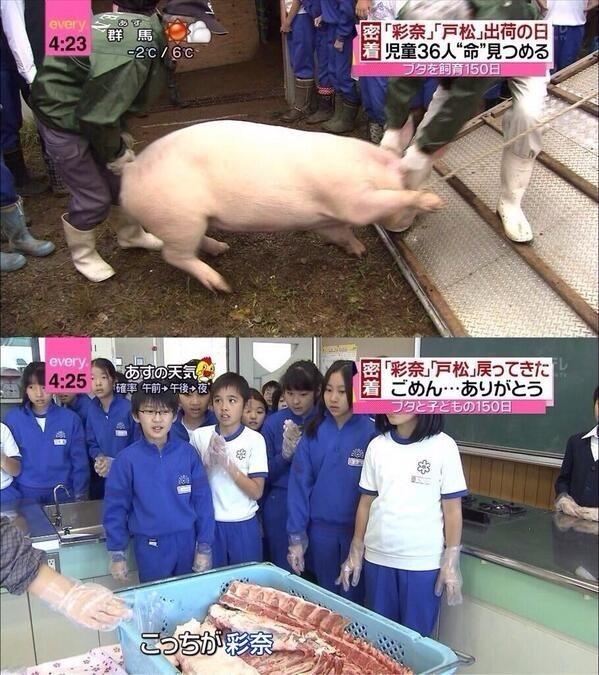 竹達彩奈511