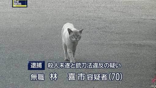 gyakutai5