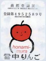 apple8_20111031105005.jpg