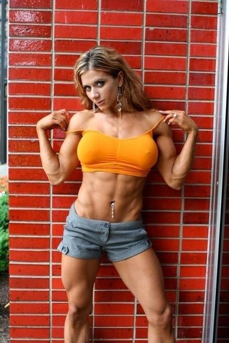 筋肉231