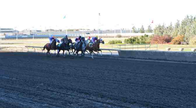 """<span class=""""entry-title-primary"""">Northlands is home to horse racing until 2018</span> <span class=""""entry-subtitle"""">Victory and heartbreak mark last day of thoroughbred season</span>"""