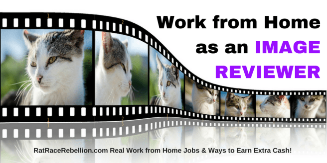 Work from Home Image Reviewers