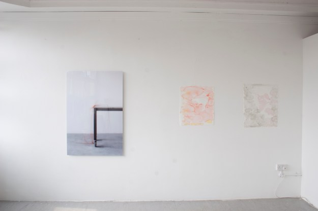 Room 2 :  Ulrich Wellmann 2 watercolours installation with Martina Geccelli photograph