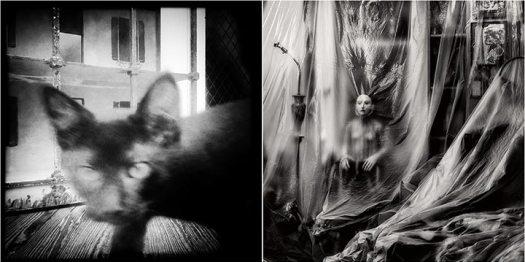 Suspicion Blurred: The Dark One Investigates and Plastic Fantastic Lover