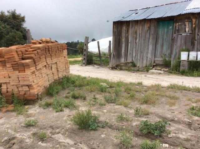 El programa ya concluyó y esta habitante de San Manuel Villa Corona sigue esperando a que las autoridades le construyan su cuarto rosa.