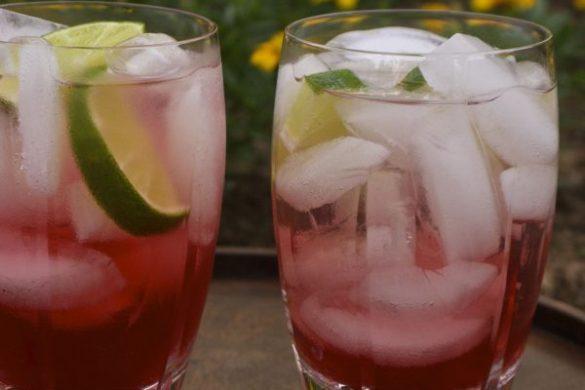 Cocktail Shrub
