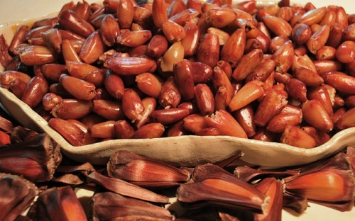 Aumento no preço do pinhão e vinho encarece festas juninas em SC