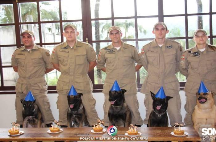 Aniversário dos cães é comemorado pela Polícia Militar de Jaraguá do Sul