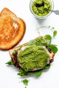 Grilled Chicken Pesto Sandwich   Real Food by Dad