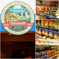 Tillamook: From Farm to Factory