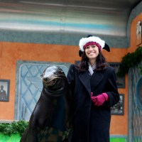 SeaWorld Celebrates Christmas All Month Long