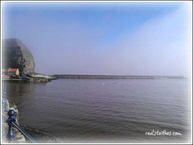 misty-morning-004