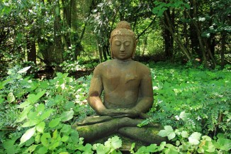 Buddha among plants trees and greenery