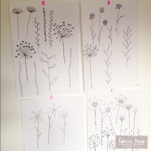 Botanicals by Rebecca Stoner as part of the #artdaily2015 project over on Instagram www.rebeccastoner.co.uk