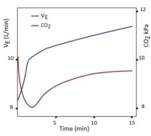 Effect of minute ventilation during oxygen-induced hypercapnia. (Abdo WF 2012)