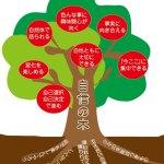 自信の木(赤)