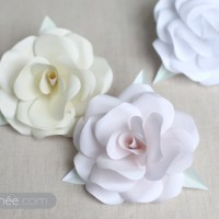 Aprenda como fazer Flores de Papel