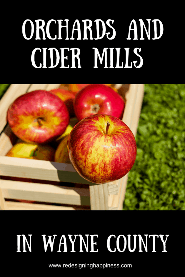 Orchards and Cider Mills in Wayne County
