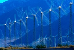 Renewable Energy's steady growth