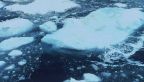 Bering_Sea_Ice_Floes2