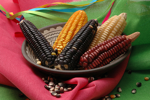 Mexico stands up to Monsanto - says no to GMO corn