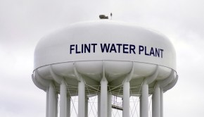flint michigan lead poisoning crisis by linda parton