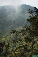 ...żeby podziwiać górski krajobraz...