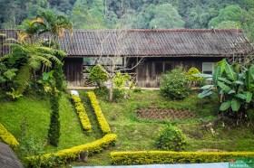 Dom mieszkalny przy plantacji kawy