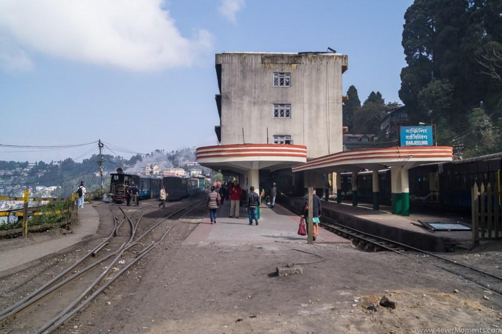 Darjeeling-68