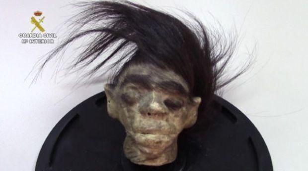 Falsa cabeza de jíbaro que vendían de forma ilegal en Internet.