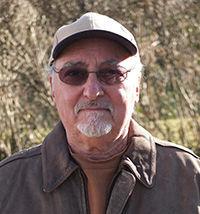 author David Saperstein