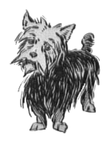 Toto, Dorothy's companion, from the Wizard of Oz series of books. (credit: http://en.wikipedia.org/wiki/Toto_(Oz))