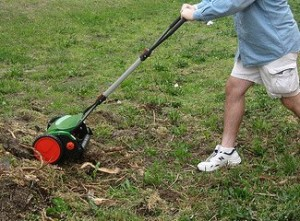 george mowing sticks