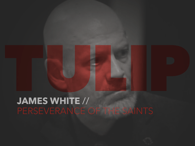 Episode 74: Perseverance of the Saints with James White