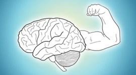 ejercicios cerebro