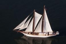 the_adornate_schooner