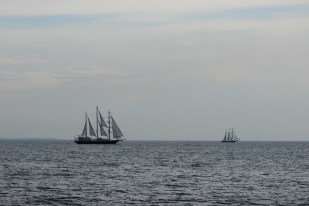 regata marii negre 2014 - parada velelor (93)