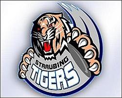 Straubing Tigers: Sandro Schönberger fällt auf unbestimmte Zeit aus